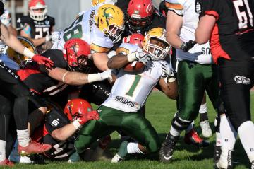 Touchdown durch RB Shayeen Davonte Edwards (Nr. 1, Cologne Crocodiles)