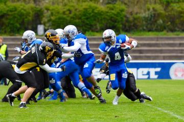 Auf Running Back William Lopes setzen die Wilddogs auch 2017.