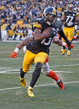DeMarcus Ayers #15 (Pittsburgh Steelers)
