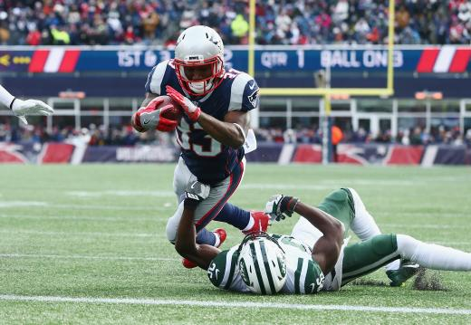 Dion Lewis #33 (New England Patriots)
