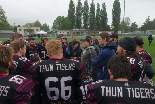 Huddle Thun Tigers