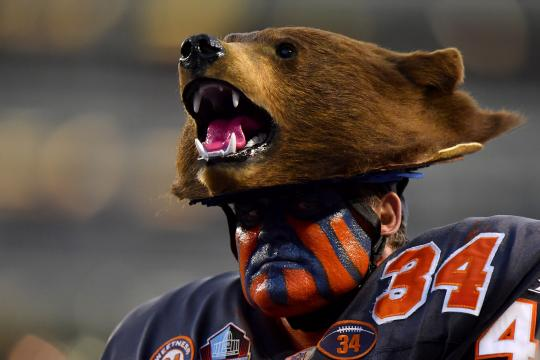 Fan (Chicago Bears)