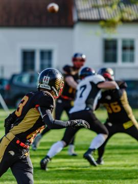 Pannonia Eagles (schwarz) - Vienna Knights...